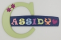 Cassidy 122 wooden wall door letter alphabet personalized name sign for kids