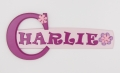 painted wooden name sign for Charlie