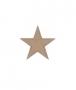 unpainted wooden star